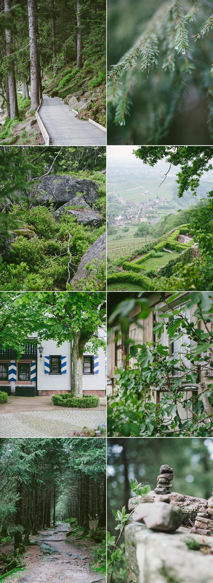 Tour im Nordschwarzwald Mummelsee Kazja Heil
