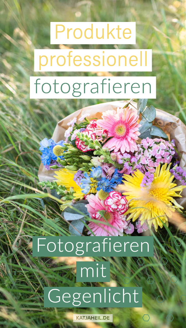Fotografieren mit Gegenlicht Anleitung